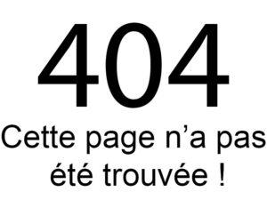Erreur 404 : Cette page n'a pas été trouvée